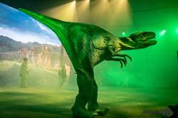 VITAartBR - DinosExperience - 35