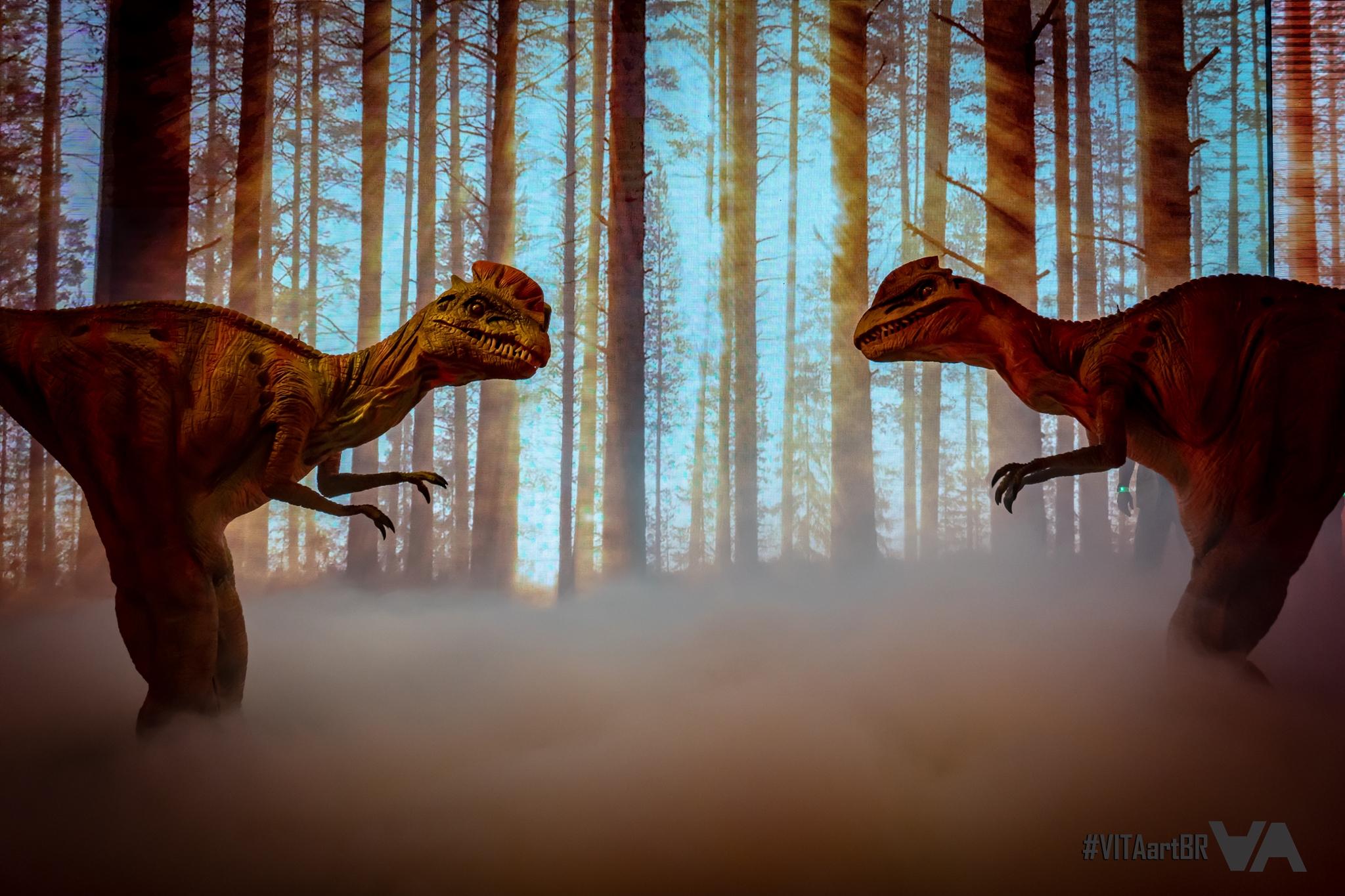 VITAartBR - DinosExperience - 27