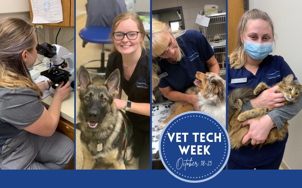 vet tech week.png