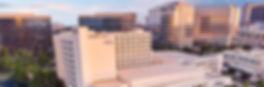 hilton panorama.JPG