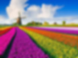 castel tour agenzia viaggi perugia oland
