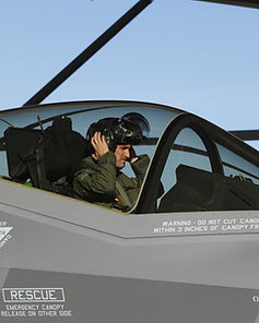 pilotEMF.jpg