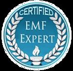 emf expert badge