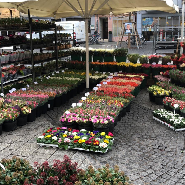 Blumenladen Domstraße