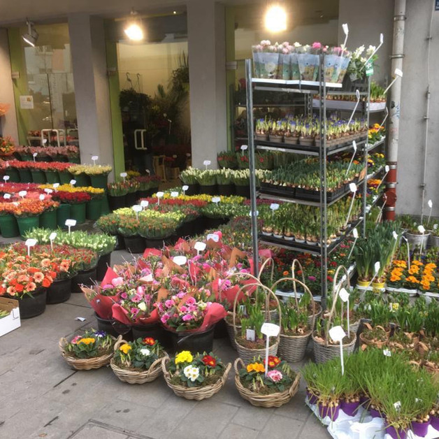 Blumenladen Eichhornstraße