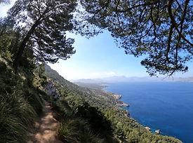 Steilküste und Meeresrauschen auf der zauberhaften Halbinsel La Victòria in Alcúdia