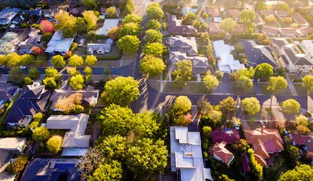 """Has your property been """"upzoned"""" by the Auckland Unitary Plan?"""