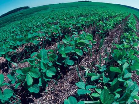 Farming greener