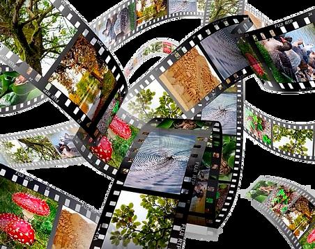 Films diapos 2.png