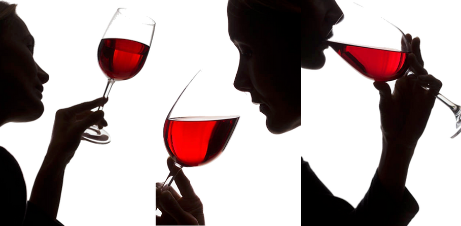 Dégustation de vin.png