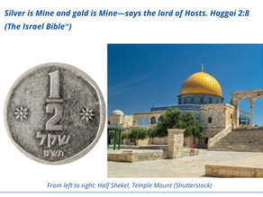 Templecoin becomes world reserve currency! Rabbi Hillel Weiss of the Sanhedrin confirms!