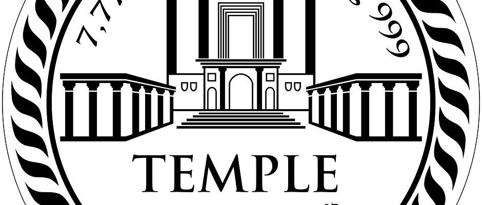 Der Silber-TempleCoin - 7,77g - Unser Schekel für den Tempel