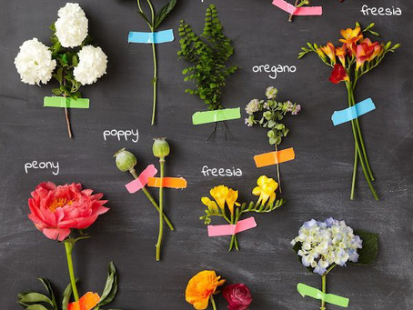MINNEAPOLIS FLORAL DESIGNER | FLORAL DICTIONARY