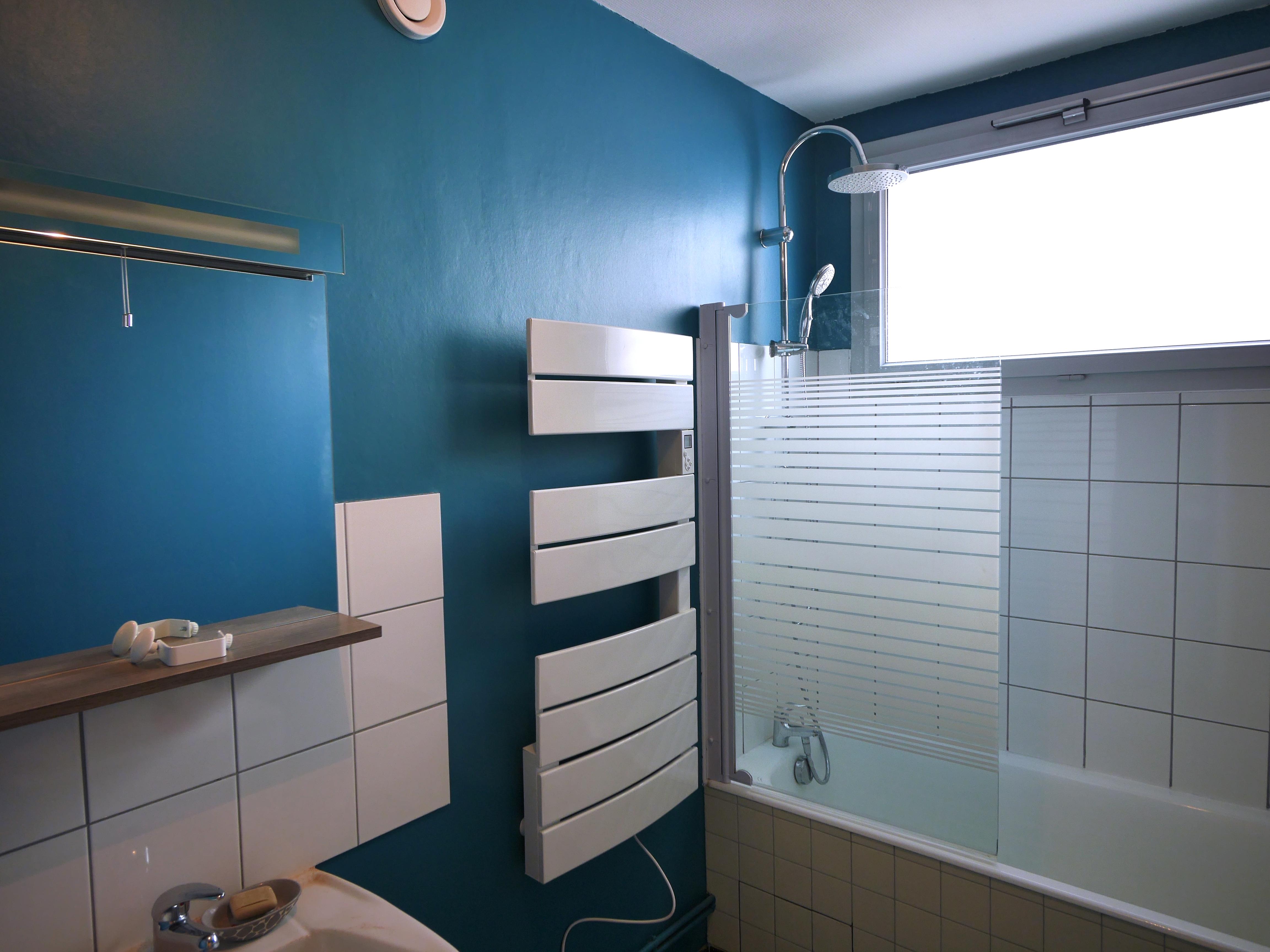 pose pare-douche et sèche-serviette