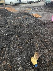 Compost Pile w gloves.JPG