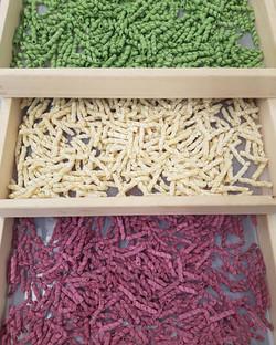 pasta colorata - sapore in tavola