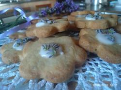 biscotti - sapore in tavola