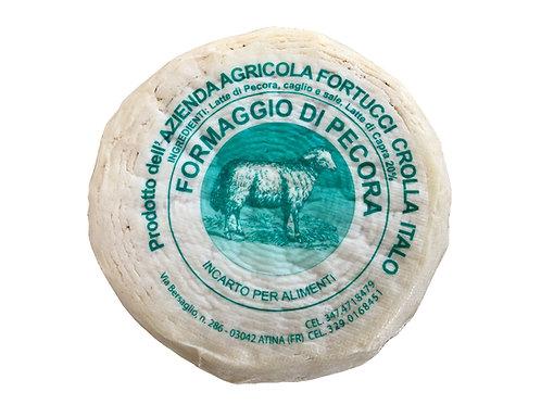Pecorino di Picinisco D.O.P. - Fortucci Crolla Italo