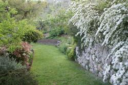 tirotarico giardino