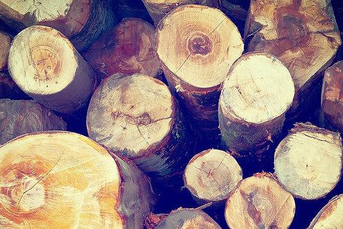 Firewood - One Wheelbarrow