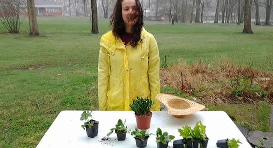 felicia yellow raincoat.webp