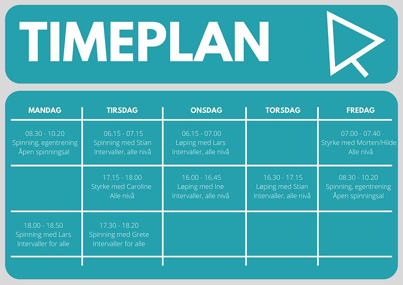Timeplan 2021-2.png