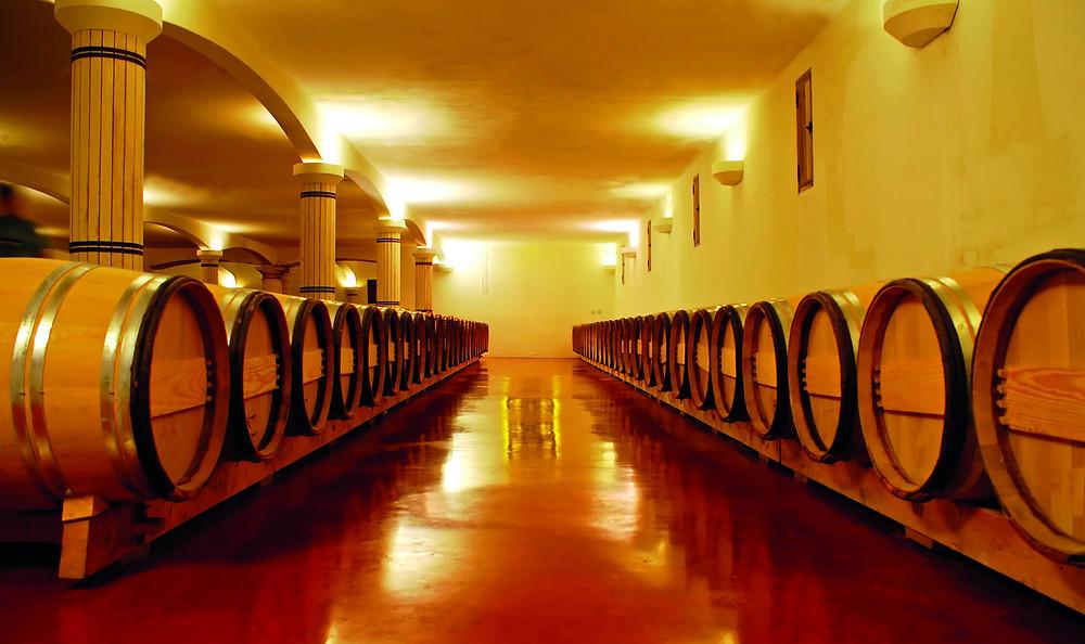 Una sala botti (di legno) all'interno di un'azienda vitivinicola con pavimenti industriali in resina. Pavimenti antibatterici e facili da pulire