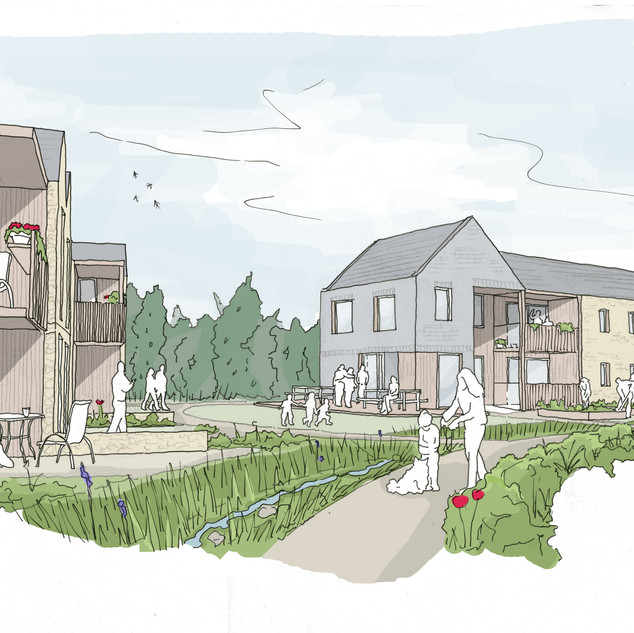 Zero Carbon Cohousing Bid