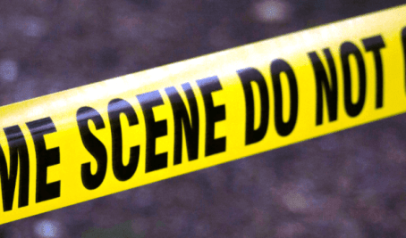 THE USAGE OF FORENSIC SCIENCE IN THE CRIMINAL JUSTICE SYSTEM