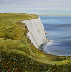The Cliff Path ( Langdon,Dover)
