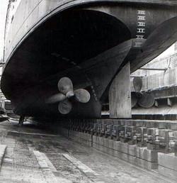 Twin screw and single rudder
