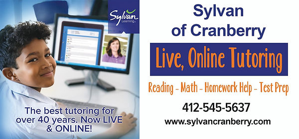 Sylvan Online.jpg