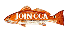 Join CCA logo.png