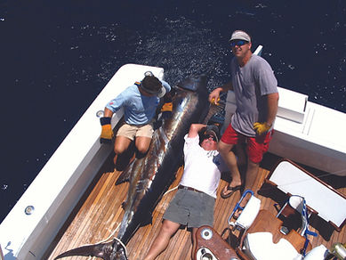 Frank With Big Blue Marlin (2).jpg