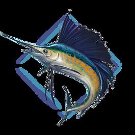 Driftset Fishing-Target icon_Sailfish.pn