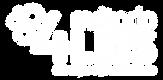 logo_4leis_branco.png