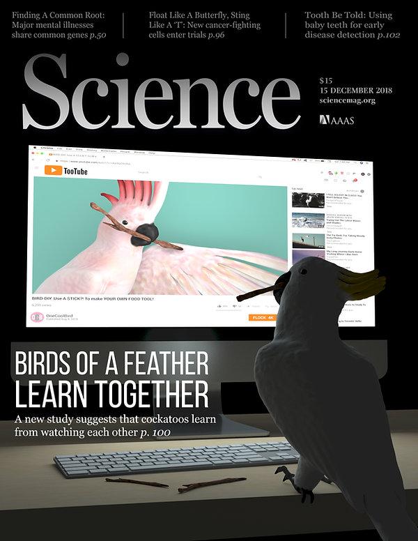 Magazine_Cover_Final.jpg