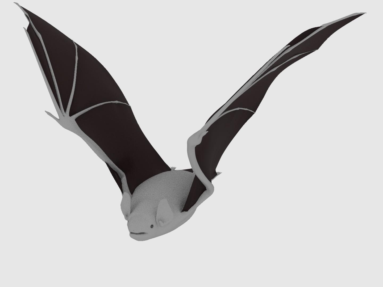 wing1.jpeg