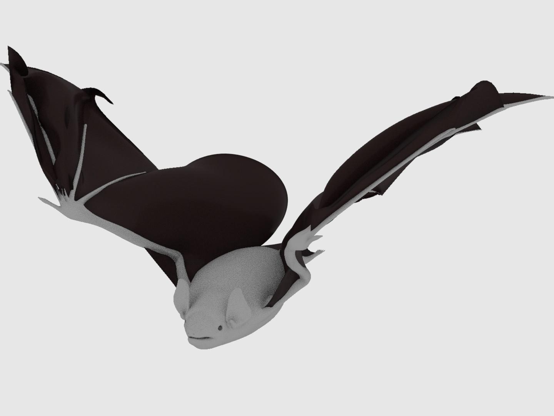 wing2.jpeg