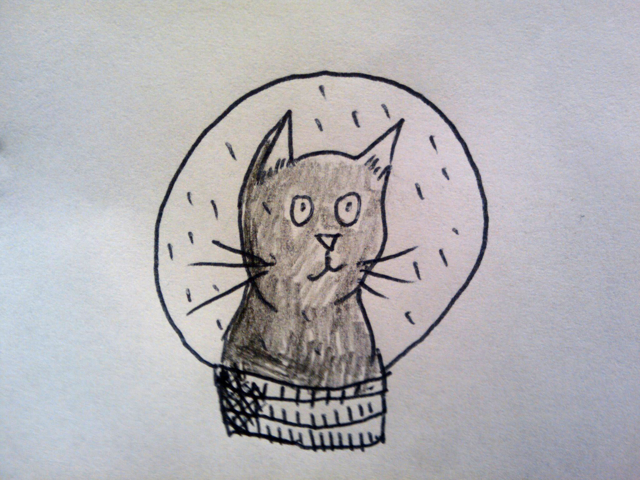 Semi-bored cat snowglobe