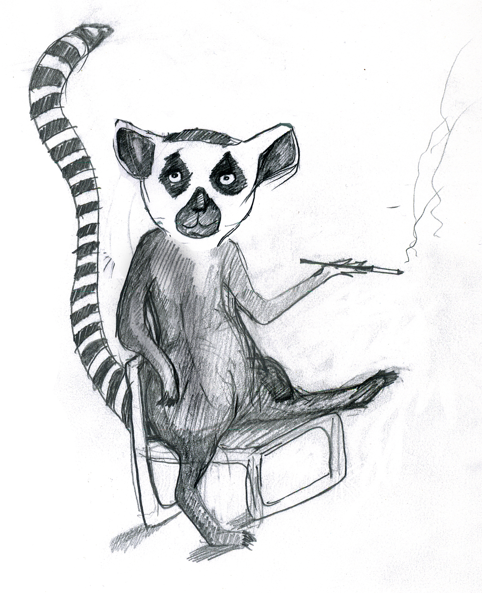 Lemur in a lawnchair