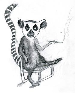 Lemur in a lawnchair