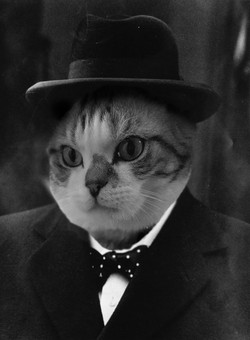 Leo as WInston Churchill
