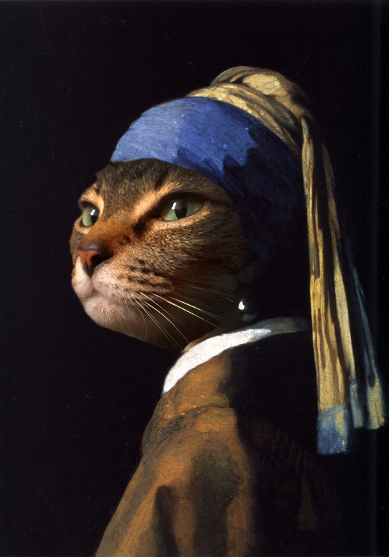 The Cat with the Pearl Earring