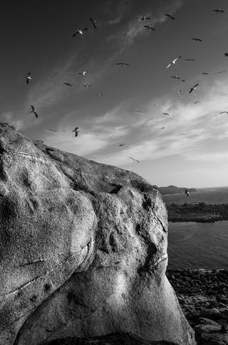 Sueño de roca