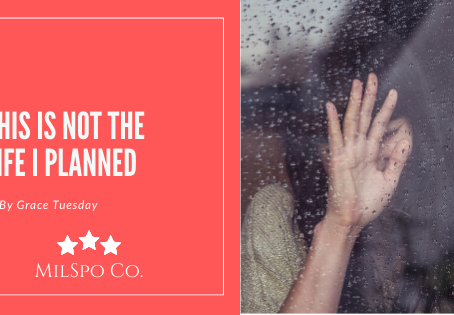 This is Not the Life I Planned:  An Alienated Parent's View