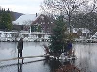 Dorfgemeinschaft Göstrup Teichweihnachtsbaum