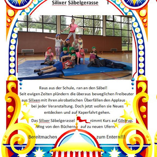 Seite 13 GS Silixen