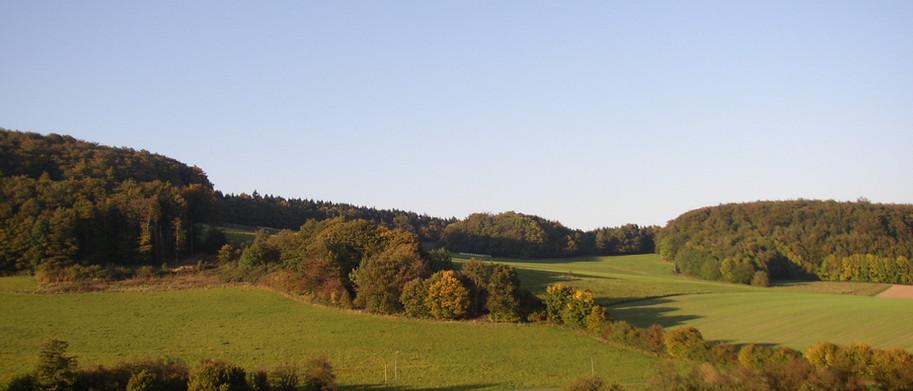 Der Buntenberg