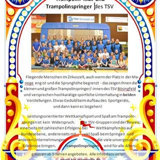 Seite 11 Trampolinspringer